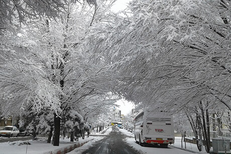 Winter in Iran