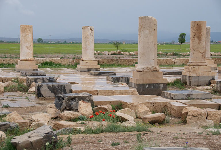 Audience (Public) Palace in Pasargadae